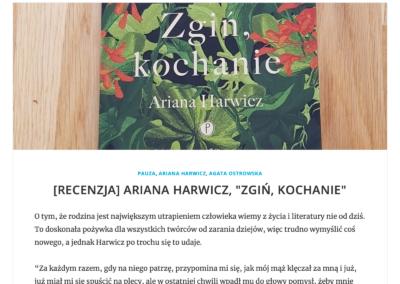 """Wojciech Szot (""""Zdaniem Szota"""") o """"Zgiń, kochanie"""""""